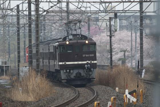 8X9A5191.JPG