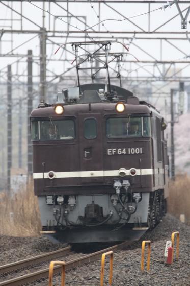 8X9A5192.JPG