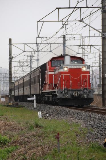 8X9A5216.JPG