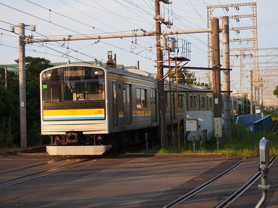 P7091558.JPG