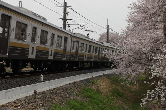 8X9A9494.JPG