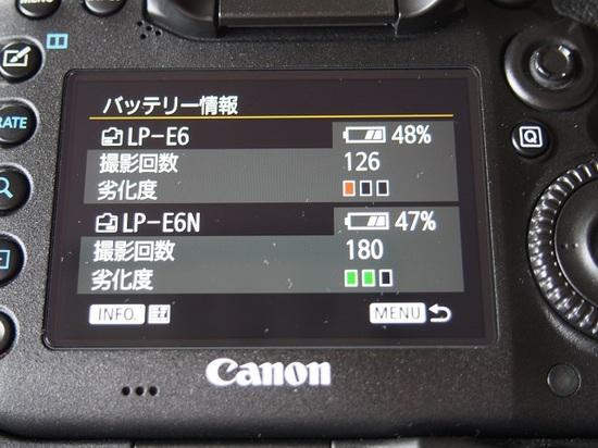 PB230351.JPG
